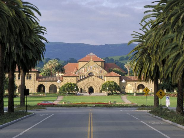 Stanford Palm Drive